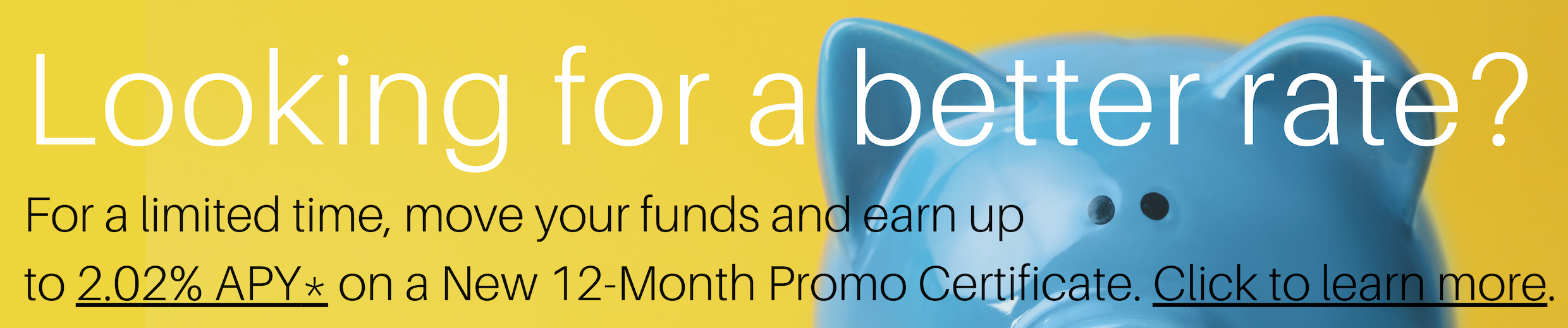 12 Month Promo Certificate Banner